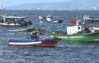 El BOE publica la convocatoria de ayudas para pescadores que faenan en aguas adyacentes al Peñón
