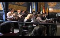 IU denuncia la falta de recepción de la urbanización El Greco por parte del Consistorio