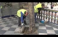 Parques y Jardines rellena con caucho reciclado 3.800 alcorques