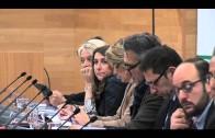 """El PP solicitará a la Diputación el respaldo a """"Ciencia en Acción"""""""