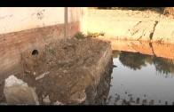Muñoz defiende la gestión municipal del arroyo Cachón en el Parlamento Andaluz