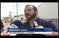 El Ayuntamiento invierte 15.000 euros en la plantación de árboles en Mirador de la Bahía