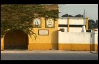 El colegio Nuestra Señora de los Milagros es premiado en el certamen Flamenco en el Aula