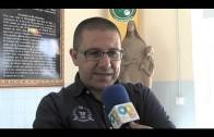 """Guti cree que la implicación y el entorno son ideales para este partido de """"liguilla"""""""