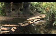 IU reclama una mesa técnica entre Junta y Ayuntamiento para abordar los problemas en el río Pícaro