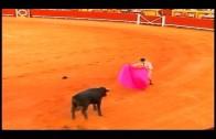 Juana Cid asiste a una charla coloquio sobre el momento actual de la fiesta de los toros