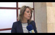 El Ayuntamiento propone a los comerciantes se sumen al III Encuentro de Guitarra Paco de Lucía