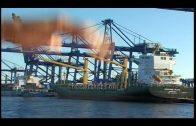 La Autoridad Portuaria acerca el puerto a 1.500 vecinos