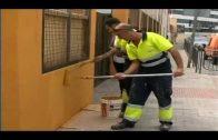 El Ayuntamiento de Algeciras invertirá unos 55 mil euros en obras de mejora en colegios este verano