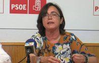 El PSOE pide a Landaluce que respete a los concejales socialistas y que sea más democrático