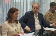 Endesa pide licencia a Urbanismo para las obras para trasladar energía desde El Cañuelo al Puerto