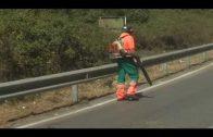 El Ayuntamiento desbroza la carretera del Faro y los accesos al Cortijo Real
