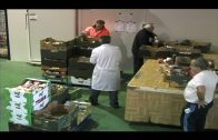 El Banco de Alimentos del Campo de Gibraltar aumenta sus datos de recogida