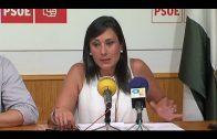 El PSOE critica la vista de Carmen Crespo al Campo de Gibraltar