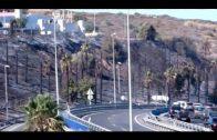 Un incendio junto a la A-7 provoca su cierre al tráfico más de dos horas