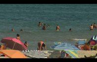 Ciudadanos insta al Ayuntamiento a presentarse al programa de rehabilitación de playas de la Junta