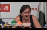 El PSOE reclama más medios para la Policía Nacional en la comarca