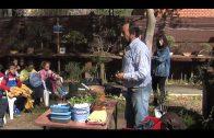 Comienzan las visitas de escolares al Jardín de los Bonsáis