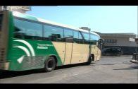 Consorcio de Transporte del Campo de Gibraltar aumenta su demanda un 0,92% hasta septiembre