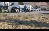 El Ayuntamiento limpia y desbroza la parcela del antiguo garaje Carteya