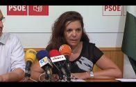 El Grupo Municipal Socialista propone un Plan de Prevención contra Incendios en Algeciras