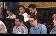 El Presupuesto Municipal y el rescate de CTM, temas protagonistas del Pleno de mañana