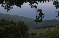 El TSJ rechaza el recurso de Almoraima contra la ampliación de los Alcornocales