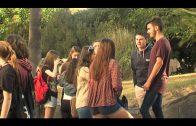 IU manifiesta su satisfacción por el apoyo  as u propuesta por la Escuela de Arte