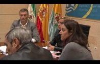 Adjudicada a 'Sistemas de Oficina' la renovación de dispositivos de impresión del ayuntamiento