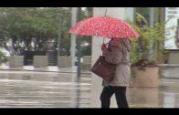 Landaluce desactiva la prealerta del Plan de Emergencia Municipal