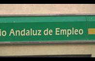Landaluce pide medidas a las administraciones para la creación de empleo