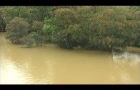 Los embalses que abastecen a la comarca mejoran con las últimas lluvias