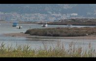 Un tractorista remolca una embarcación y se da a la fuga en el paseo marítimo de Palmones