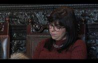 IU defenderá las candidaturas de APADIS y AGADEN para los galardones del Día de Andalucía