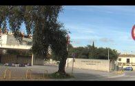 La Policía Nacional detiene en Algeciras a una persona por quebrantar una orden judicial