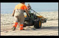 Las playas ofrecen buenas condiciones para el disfrute ciudadano