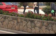 Parques y Jardines acomete una campaña de plantación de flores de temporada