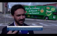 El Frutibus visita Algeciras