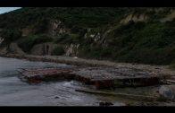 El GM PSOE reclama la retirada inmediata de un tanque de batea en la playa de Getares