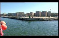 """La APBA celebra la 5ª edición de """"Conoce tu Puerto"""" con salidas desde Algeciras y la Línea"""