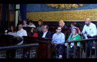 El PSOE pide limpieza, desbroce y fumigación de choque en verano