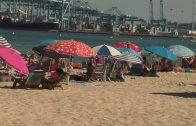 El grupo municipal socialista denuncia la falta de contenedores en la playa del Rinconcillo