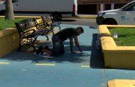 Limpieza y Parques y Jardines continúan con el plan de choque en las barriadas de Algeciras