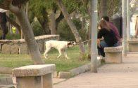 El Registro de Animales de Compañía de Andalucía cuenta con más de 360.000 mascotas de la provincia