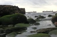 Verdemar señala la presencia de mariscadores que siguen expoliando las costas de Punta Carnero