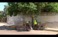 Parques y Jardines arregla alcorques y acera de  la calle García Lorca, en El Saldillo