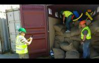 Aprehendidos en el puerto de Algeciras 176 kilos de cocaína ocultos en un contenedor con cacao