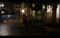 Operarios de Parques y Jardines realizan una gran poda de las palmeras de la Plaza Alta
