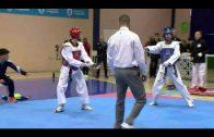 Exito en el Andaluz de taekwondo