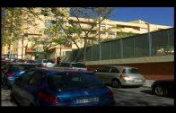 Izquierda Unida reclama actuaciones ante la plaga que afecta al CEIP Puerta del Mar